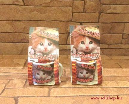 MINI bögre BOLDOG NÉVNAPOT macskás